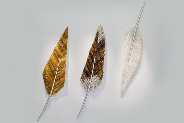 Anime-Feathers-Golden-Eagle-Bald-Eagle-Dove