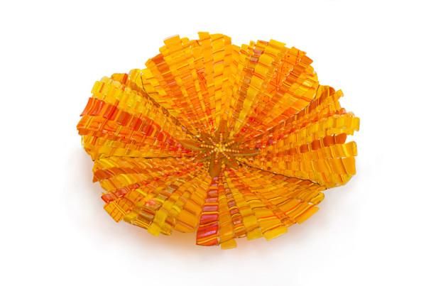 Golden-Poppy